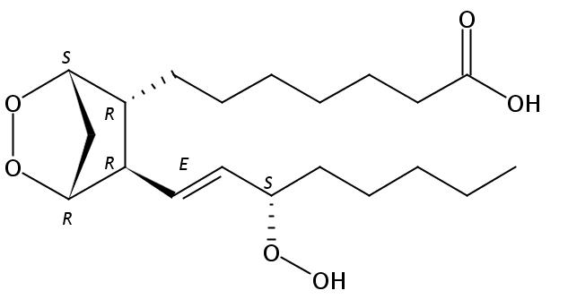 Structural formula of Prostaglandin G1