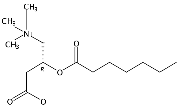 Structural formula of Heptanoyl-L-Carnitine HCl salt