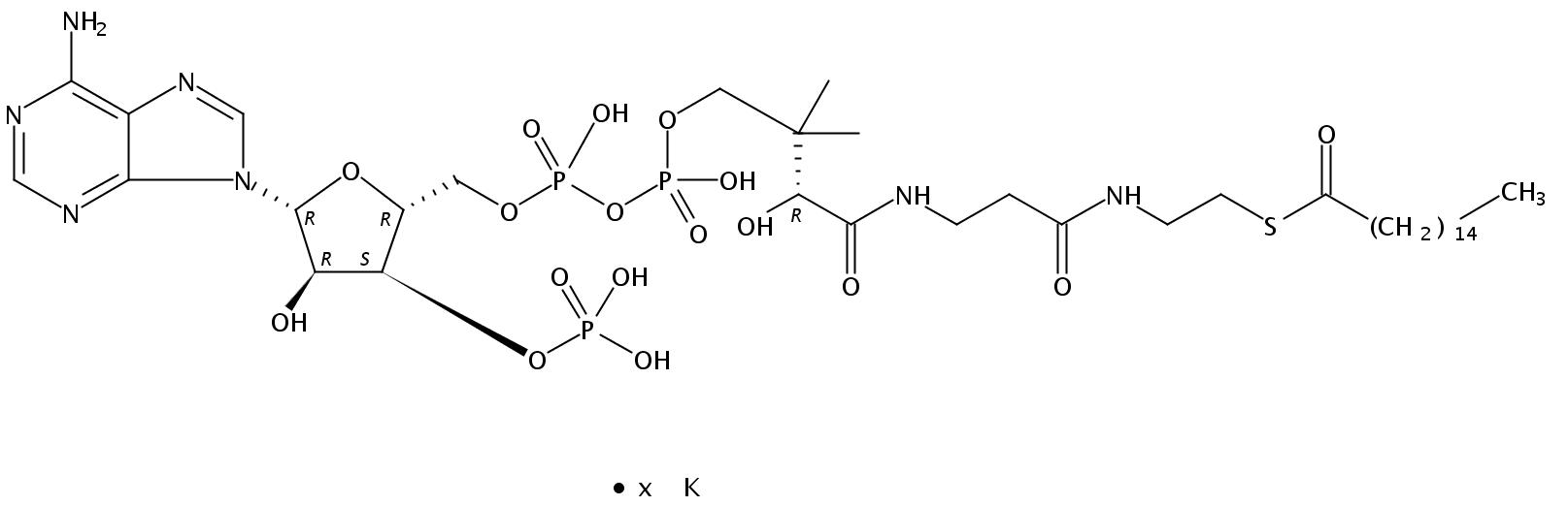 Structural formula of Hexadecanoyl Coenzyme A K salt