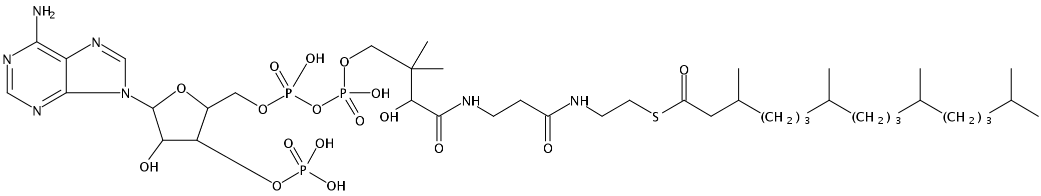 Structural formula of 3,7,11,15-Tetramethylhexadecanoyl Coenzyme A (NH4)3 salt